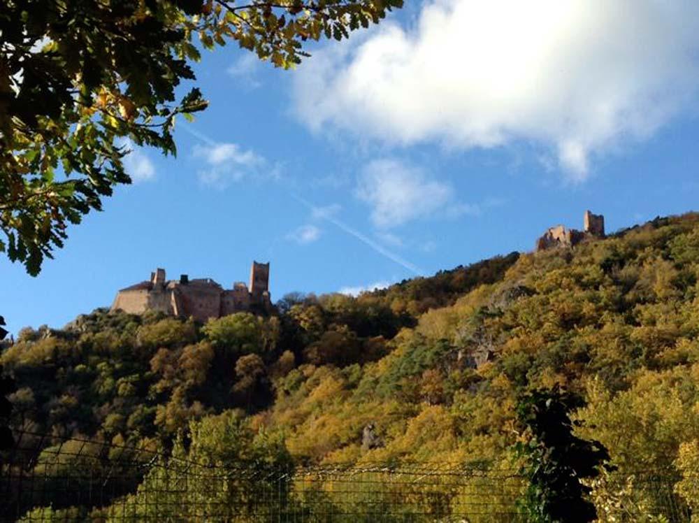 Alsace-1000-web-2-of-3-châteaux-Ribeauvillé