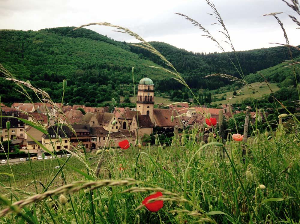 Alsace-1000-web-Joelle-Aubry---IMG_1985
