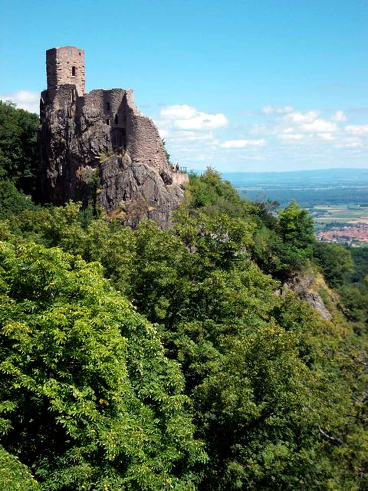 Alsace-1000-web-Le-Girsberg-XIIIe-Ribeauvillé_2