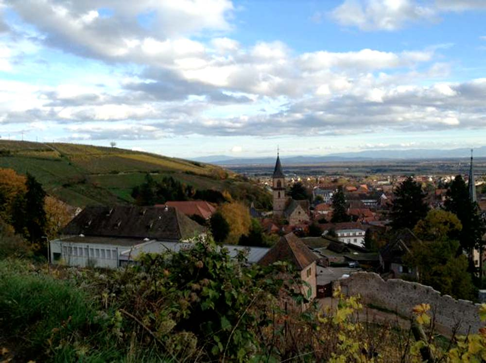 Alsace-1000-web-Ribeauvillé-from-the-wineyards