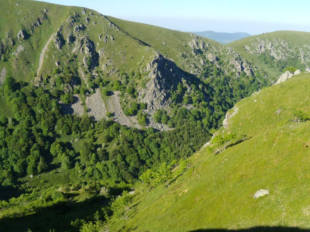 Alsace-1000-web-Vosges-Mountains-Route-des-crêtes