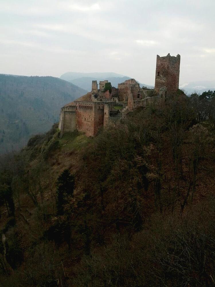 Replace 20 Château-Alsace Alsace 1000 web